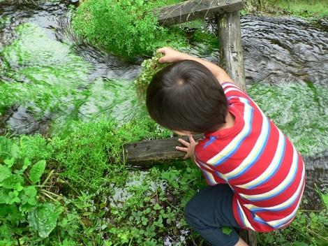 水遊びに夢中な男の子
