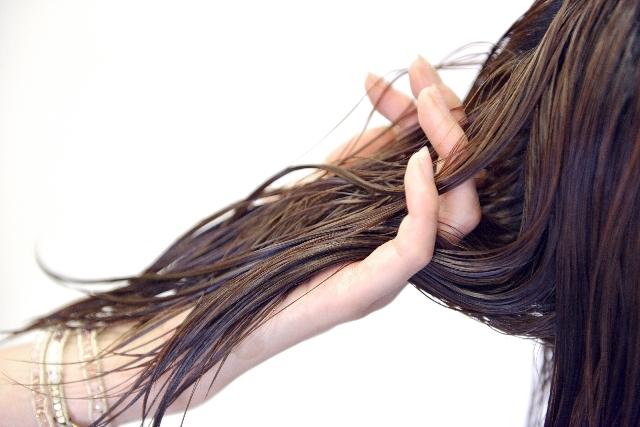 美容師が髪を手に取る